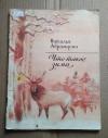 Купить книгу Абрамцева Н. - Что такое зима