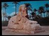 - Giza. The Sphinx of Sakkara.