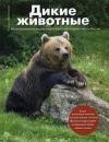 Купить книгу Митителло, Ксения - Дикие животные. Иллюстрированная энциклопедия обитателей средней полосы России