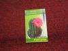 Купить книгу с. павлов - кактусы