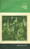 Купить книгу Петров В. В. - Весна в жизни леса
