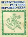 купить книгу Н. Н. Брезгин - Лекарственные растения верхневолжья