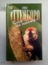 Купить книгу Эттенборо, Дэвид - К югу от экватора (Зеленая серия)