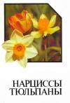 Купить книгу Марков А. Г. - Нарциссы. Тюльпаны. Альбом-справочник.