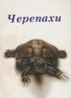 Райнер Прашаг - Черепахи