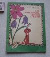 Купить книгу Бианки - Как муравьишка домой спешил