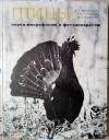 Купить книгу Птицы перед микрофоном и фотоаппаратом - Птицы перед микрофоном и фотоаппаратом