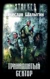 Купить книгу Вячеслав Шалыгин - Тринадцатый сектор