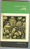 Купить книгу Удалова Р., Вьюгина Н. - В мире кактусов. 2-е изд. Научно-популярная серия.