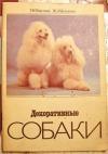 Купить книгу Никулина, Чеснокова - Декоративные собаки