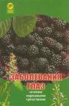 Купить книгу Веремчук А. - Заболевания глаз. Лечение народными средствами