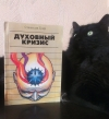 Купить книгу Гроф, Станислав - Духовный кризис