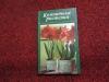л. домненкова - комнатные растения