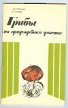 Купить книгу Стенина Н. П., Шмидт А. А. - Грибы на приусадебном участке.
