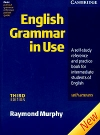 Raymond Murphy - English Grammar in Use