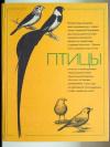 Купить книгу [автор не указан] - Птицы