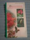 Купить книгу Лимаренко А. Ю.; Палеева Т. В. - Декоративные деревья и кустарники