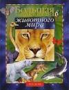 Купить книгу Бейко, В. - Большая энциклопедия животного мира