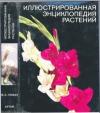 Новак Ф. А. - Иллюстрированная энциклопедия растений