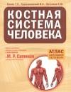 Билич Г., Крыжановский В., Зигалова Е. - Костная система человека
