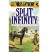 Купить книгу Piers Anthony - Split Infinity