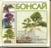 Купить книгу Волкова - Бонсай